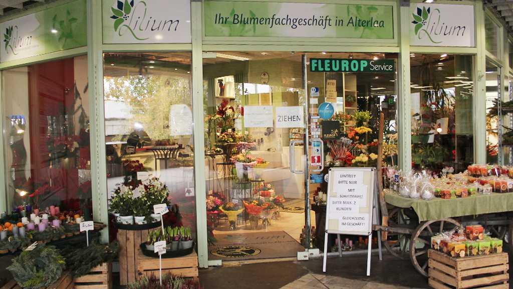 Lilium-Kaufpark-Alterlaa